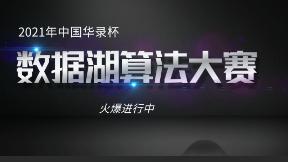 2021中国华录杯,数据湖算法大赛
