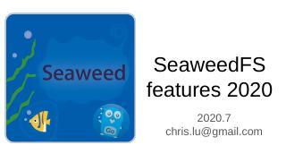 2020 SeaweedFS 简介
