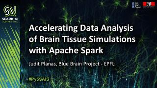 用Apache Spark加速脑组织模拟数据分析