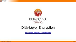 Disk-Level Encryption