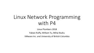 Linux Network Programming with P4