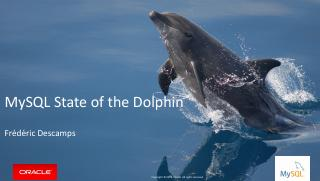 MySQL State of the Dolphin