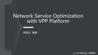 Network Service Optimization with VPP Platform