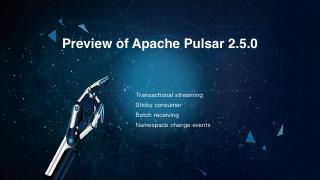 Preview of Apache Pulsar 2.5.0