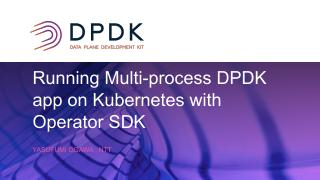 Running Multi-process DPDK App on Kubernetes ...
