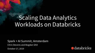 Scaling Data Analytics Workloads on Databricks