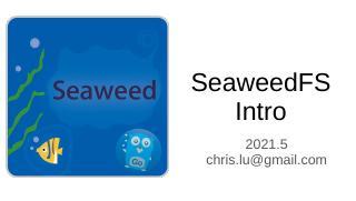 2021 SeaweedFS 进展简介