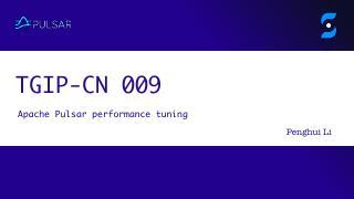 TGIP-CN-009:Pulsar pe...