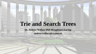 Trie & Search树