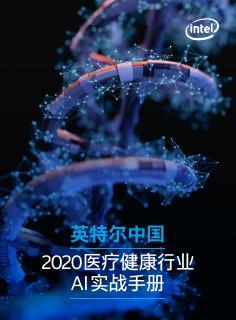 ai-guidebook-healthcare-cn-2020