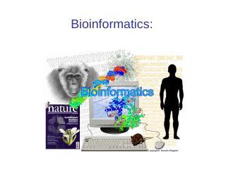 Bioinformatics Lecture 1