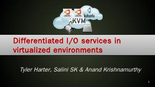 Differentiated IO services - Wisc