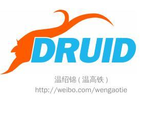 Druid数据库连接池介绍