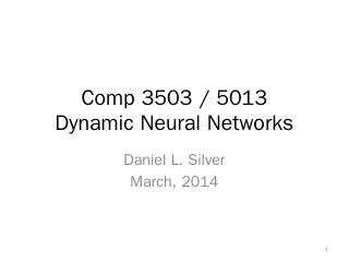 Dynamic Neural Networks