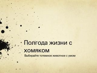ember presentation