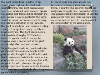 How do Pandas survive in the wild? - China Gi...