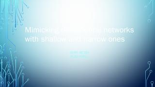 Mimicking deep neural networks with shallow a...