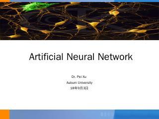 Model Essentials  Neural Networks - Auburn Un...