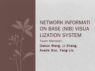 Network Information Base (NIB) visualization ...