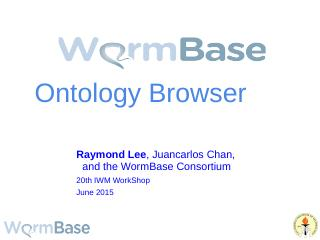 Ontology_Browser-WormBase_workshop.pptx - Wor...