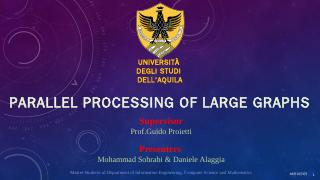 Parallel processing o...