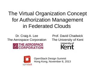 The Virtual Organization Concept in Federal C...
