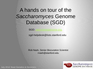protein serine/threonine kinase activity - SG...
