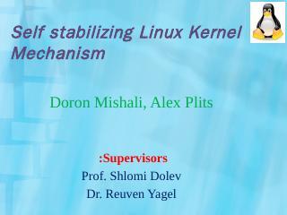 Self stabilizing Linux Kernel Mechanism