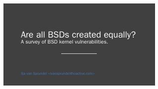 survey of BSD kernel vulnerabilities