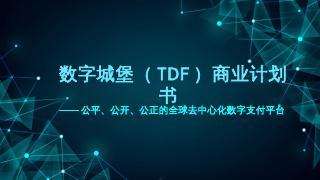 【数字城堡】TDF商业计划书.pptx -...