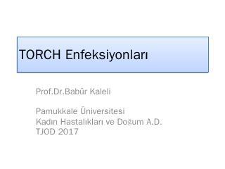 TORCH Enfeksiyonlar - TJOD