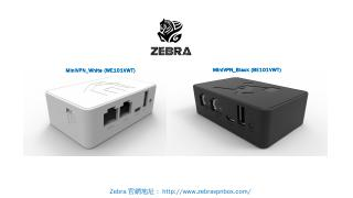 VPN 設定  白機上網方式設定 - ZEBRA