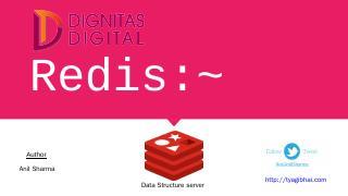 Who is using redis? - Dignitas Digital
